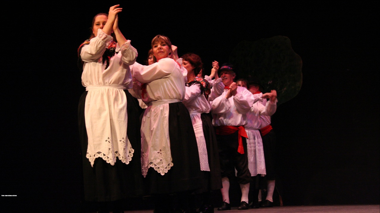 Spectacle annuel, 2007