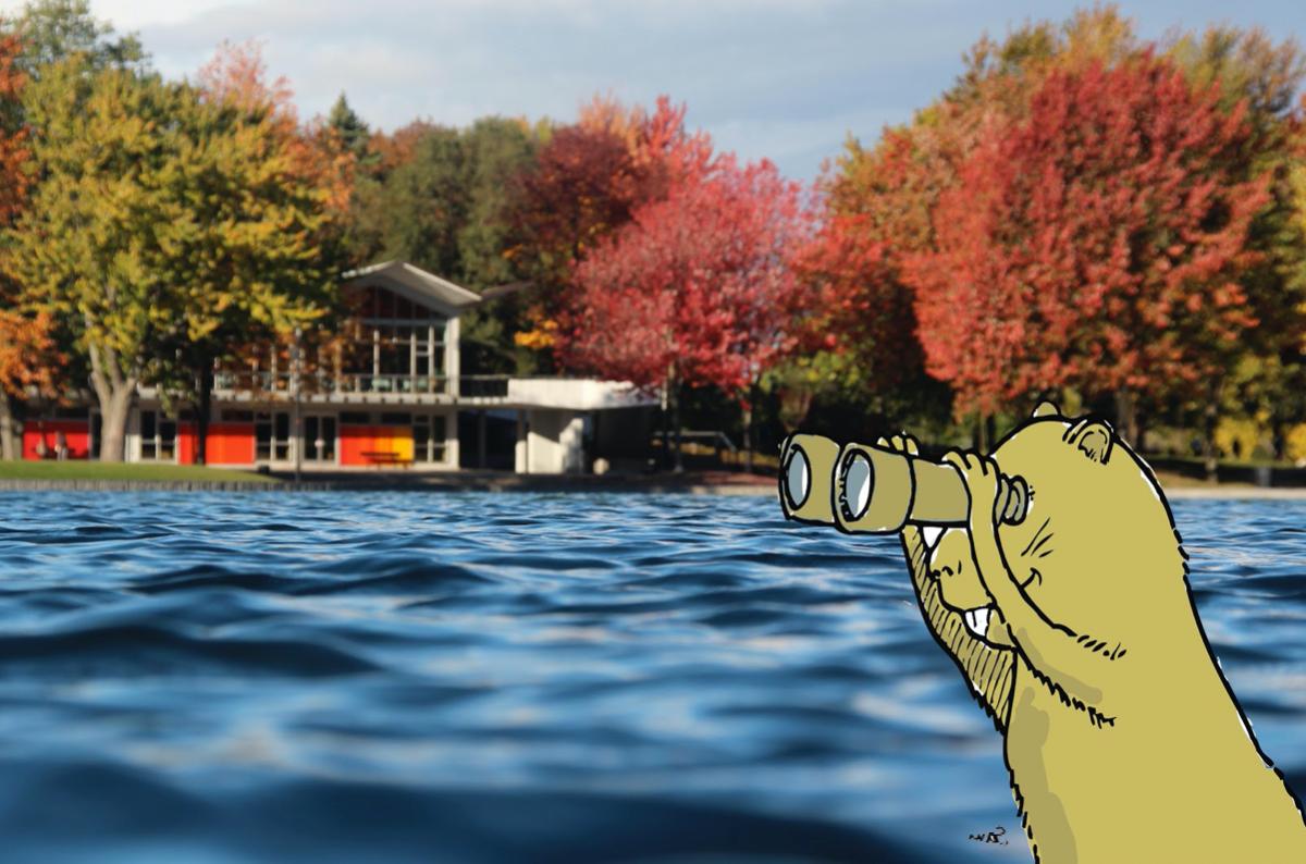 Rallye : Les mystères du Lac-aux-Castors