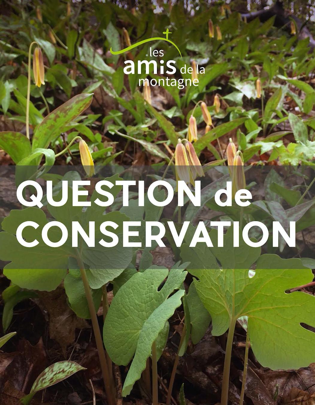 Kiosque: Question de conservation