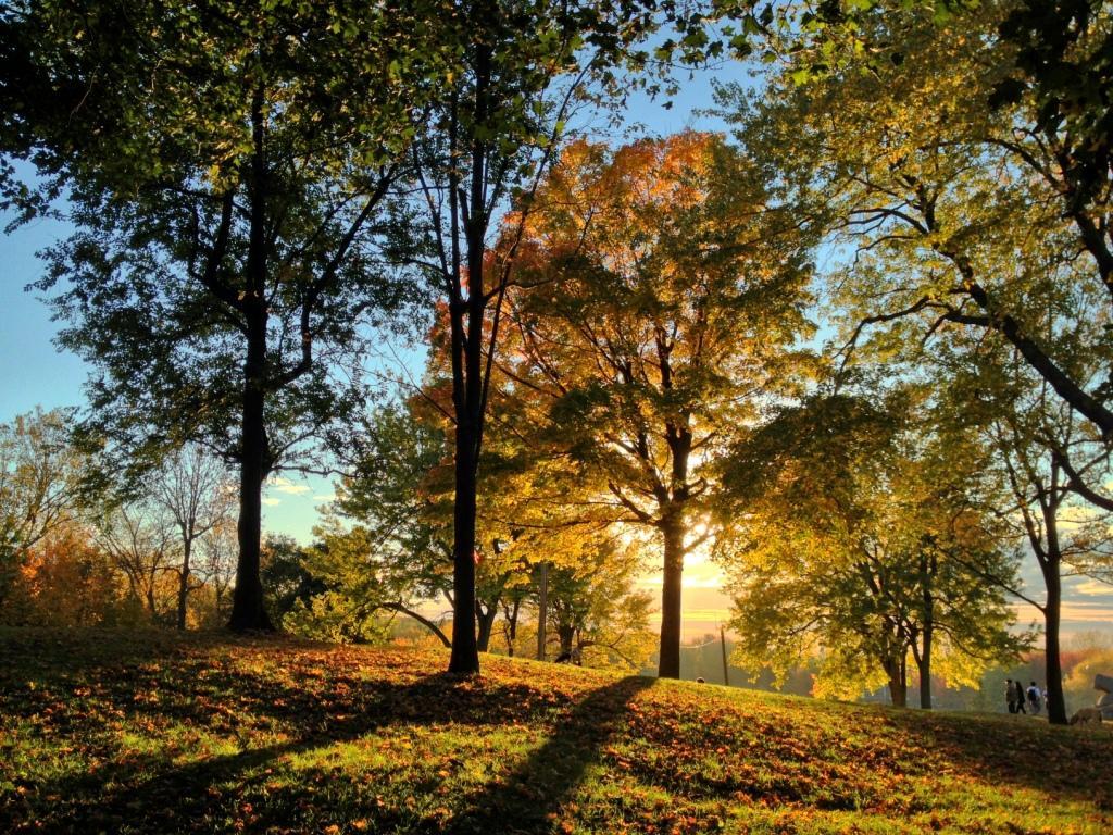 Fall PhotoWalk on Mount Royal