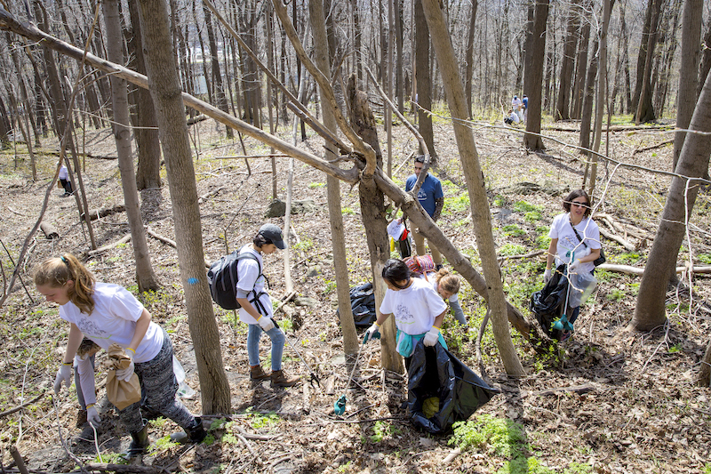 Mount Royal Clean-Up 2019: Treasure or Trash?