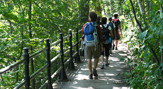 Mount Royal Summit Discovery Walk