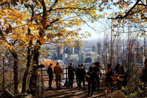Three Summits of Mount Royal Discovery Walk