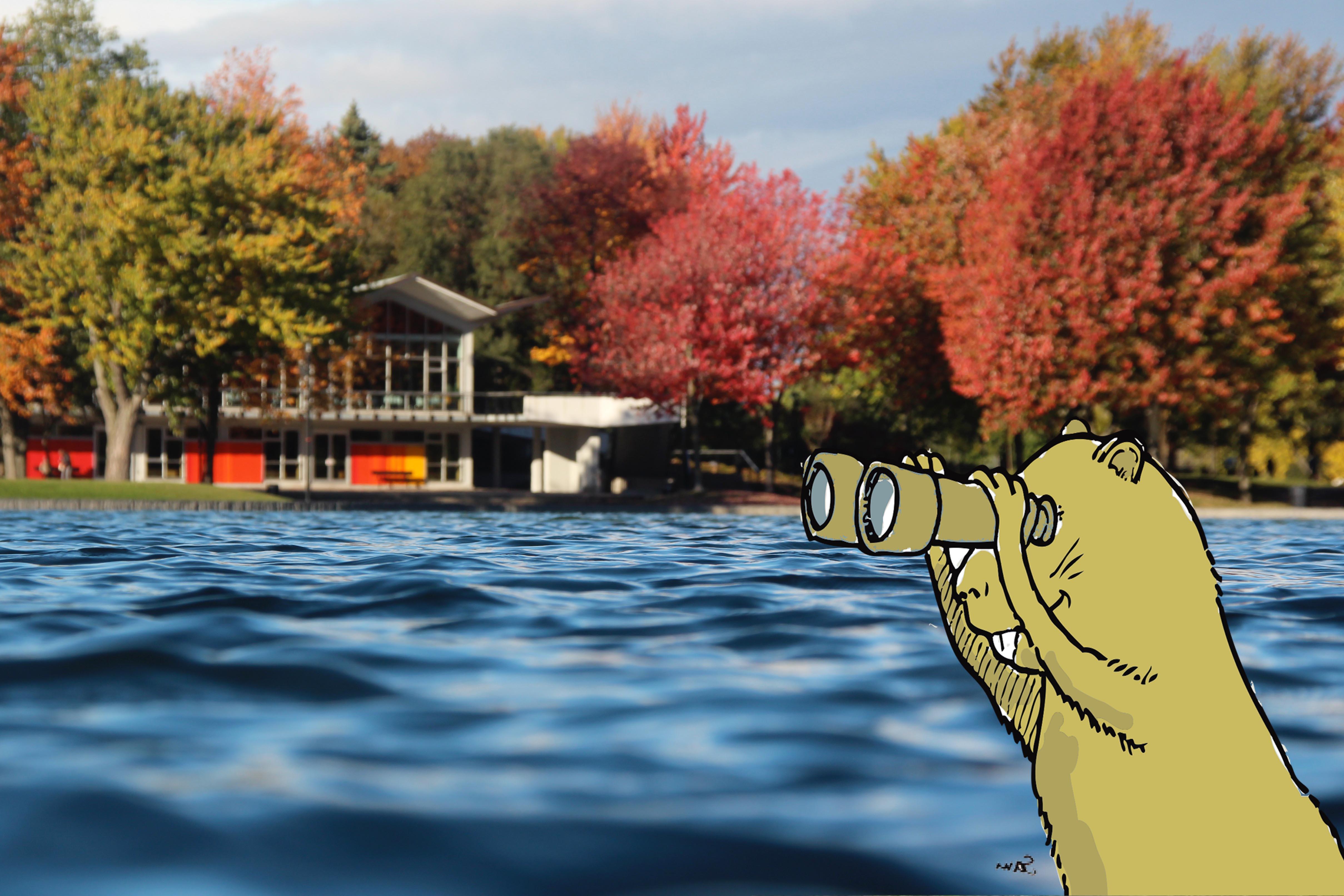 Rallye : Les mystères du lac aux Castors