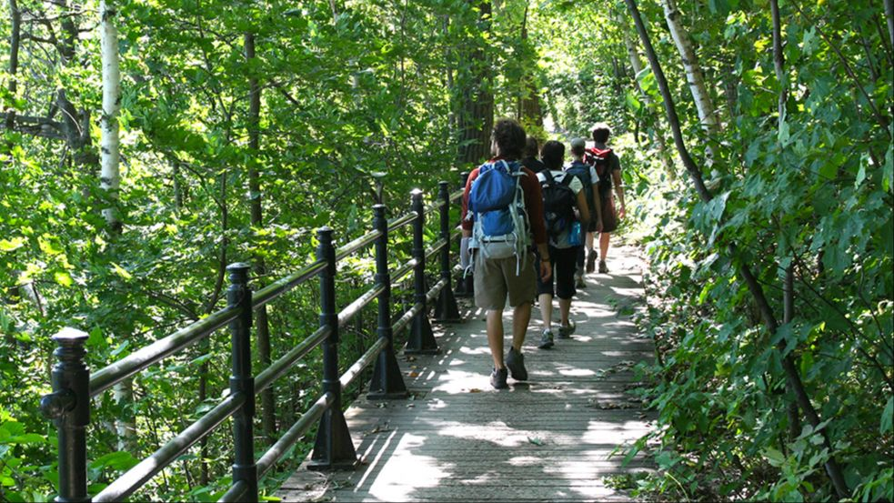 Webinar: How Can We Reconcile Public Use and Conservation of Mount Royal?