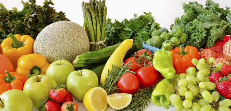 Contribution économique au Québec de la filière des fruits et légumes