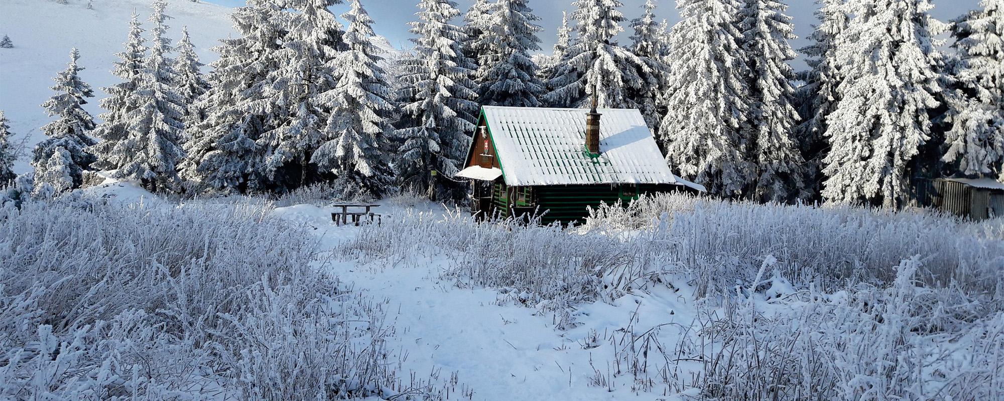 045 photo carrousel chalet dans la neige