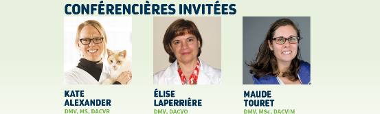 Trois perles, nous parlerons d'OOR : ophtalmologie, oncologie et radiologie