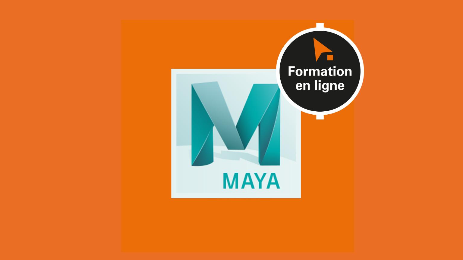 Maya - Spécialisation Rigg