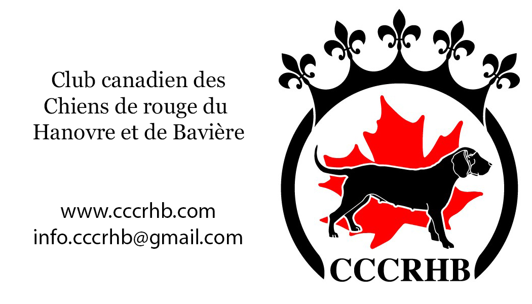 Club canadien des Chiens de rouge du Hanovre et de Bavière
