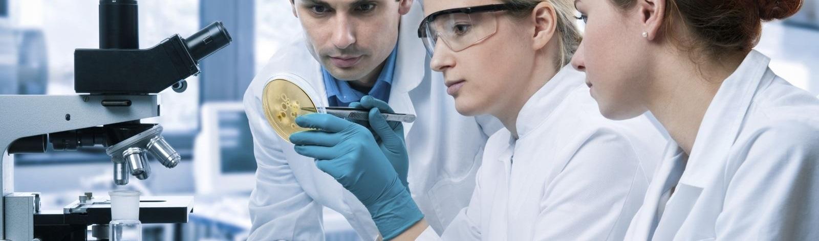 Association des microbiologistes du Québec