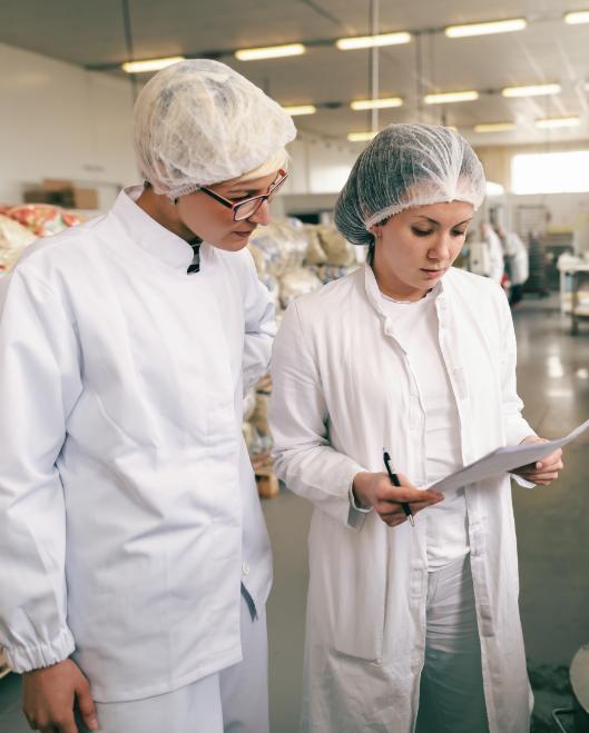 L'industrie - Métiers et profession