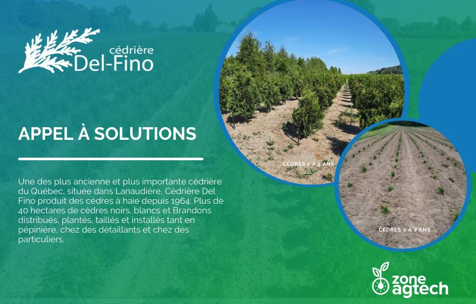 Cédrière Del-Fino - Appel à solutions