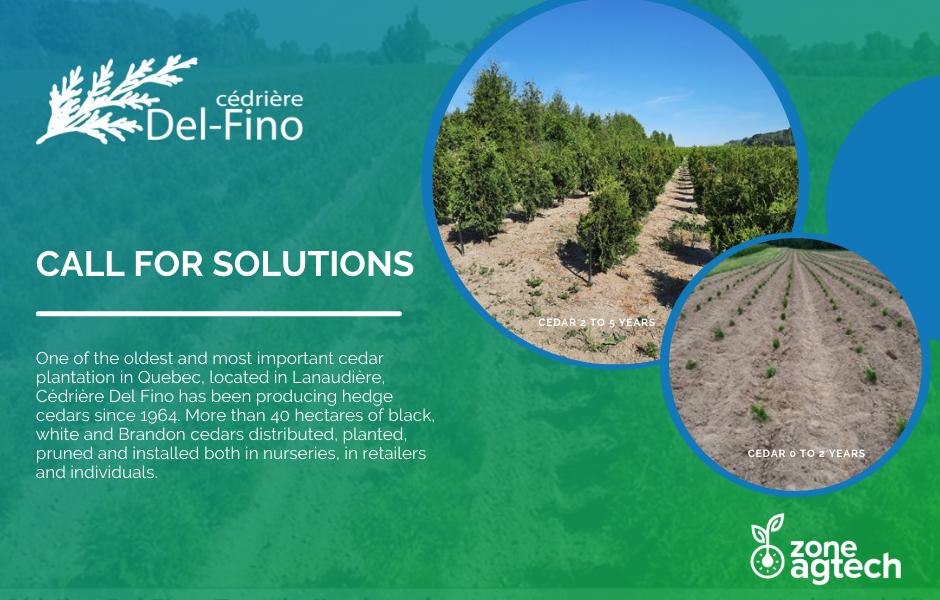 Cédrière Del-Fino - Call for solutions