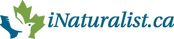 Logo iNaturalist.ca