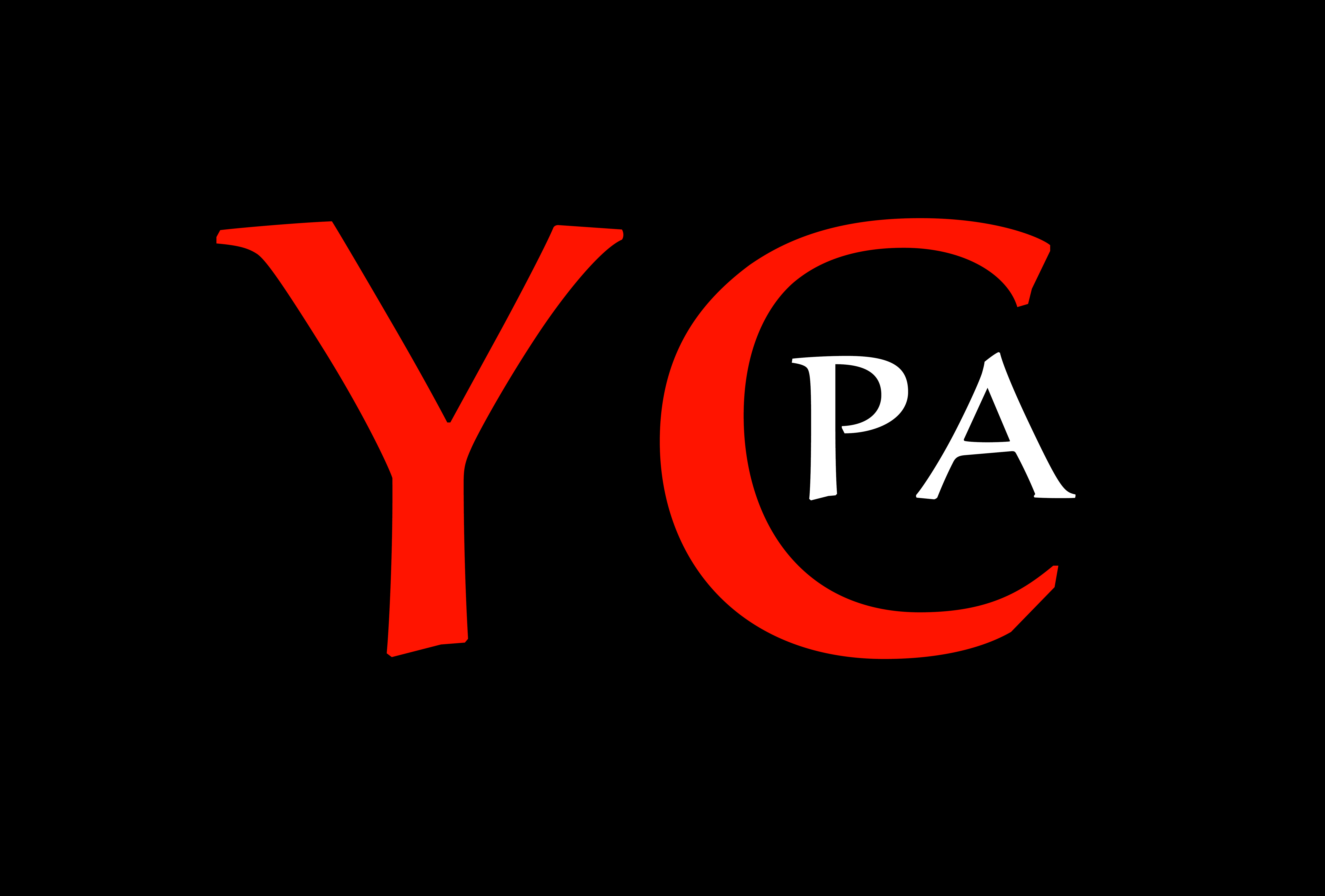 Logo Young Chinese Professionals Association