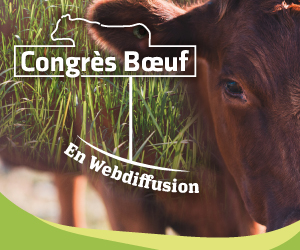 Congrès Boeuf 2020