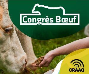 Congrès Boeuf