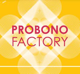 Probono Factory (13) Lever les freins à l'emploi