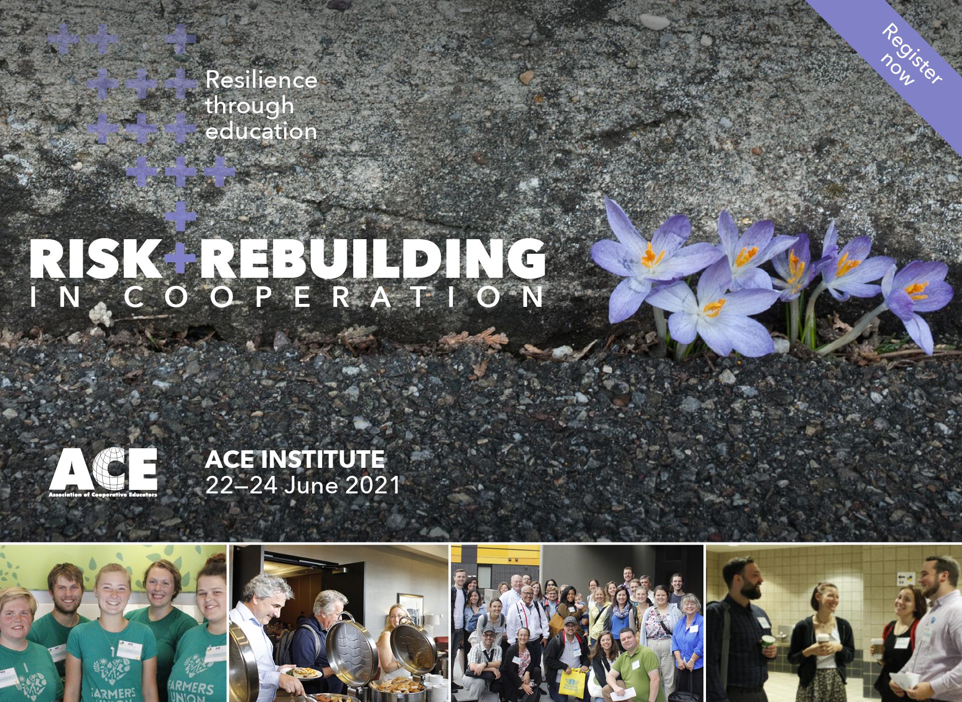2021 Virtual ACE Institute