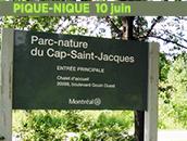 Pique-nique au Parc-nature du Cap-Saint-Jacques (Montréal)