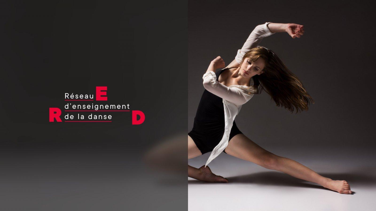 Le Réseau d'enseignement de la danse